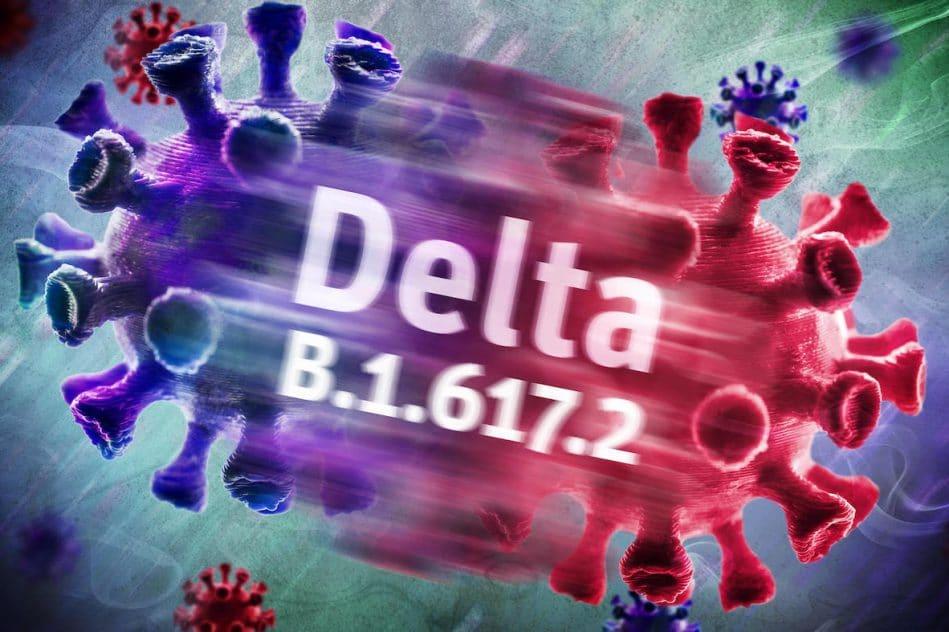 variant delta en passe devenir cause dominante covid-19 dans monde
