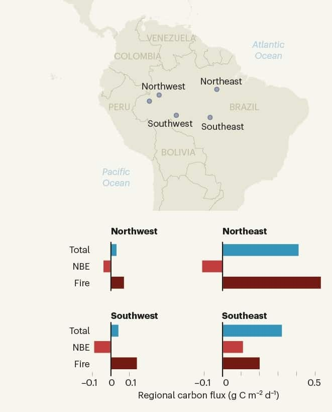 bilan carbone parties amazonie