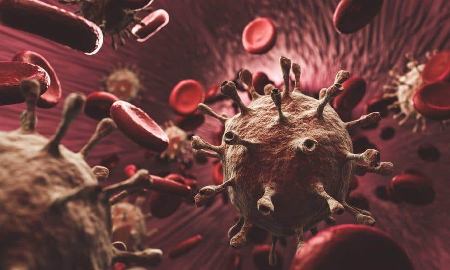 covid impacte durablement cellules sanguines