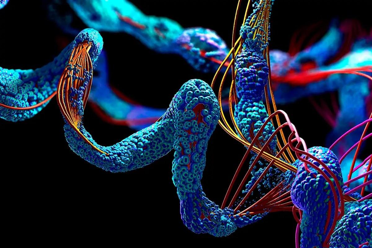 son IA pourrait prédire la structure de toutes les protéines connues