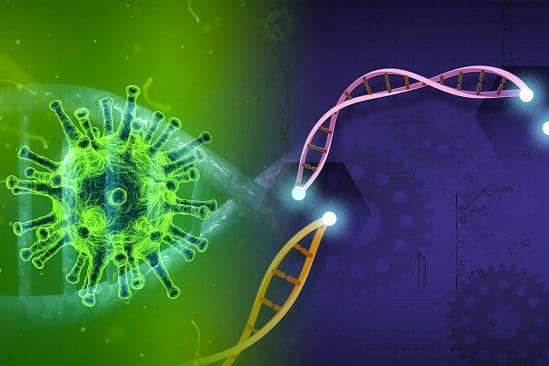 espoir traitement covid efficace outil edition genetique crispr bloque replication virus