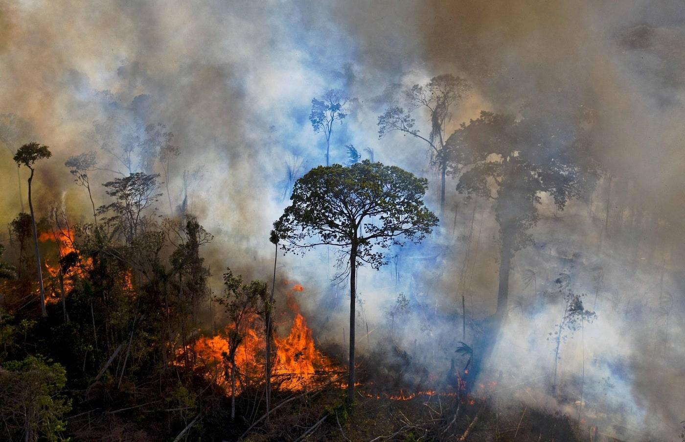 Une grande partie de la forêt amazonienne émet maintenant plus de CO2 qu'elle n'en absorbe