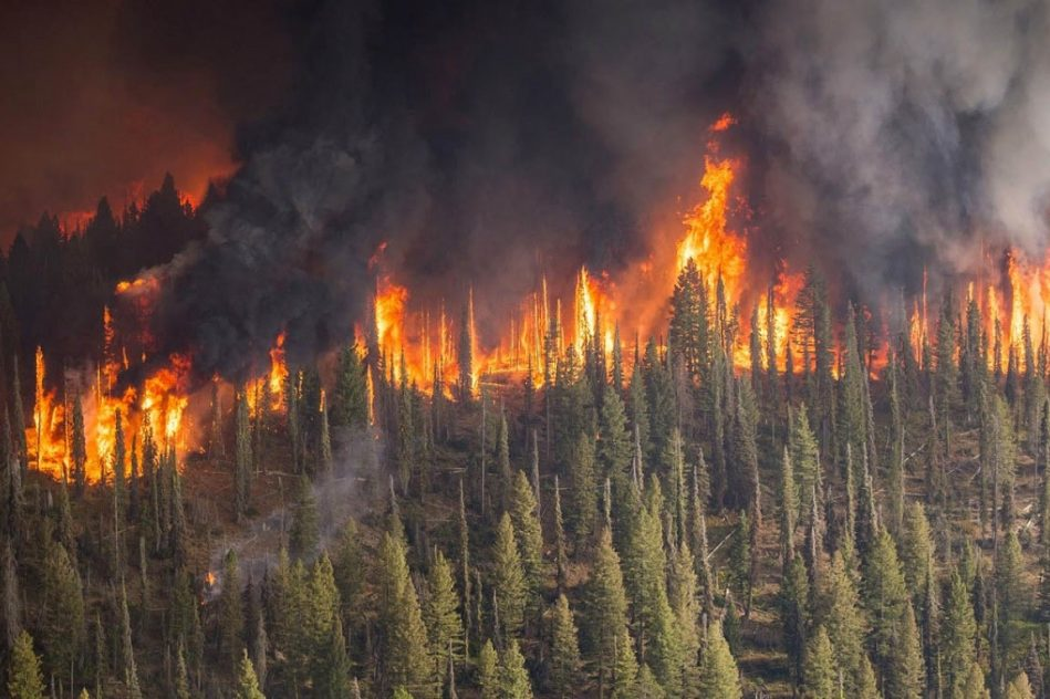incendies destructeurs inondations meurtrieres frappent trois continent