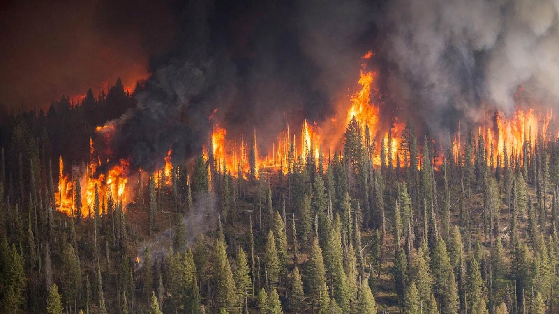 Incendies destructeurs et inondations meurtrières frappent simultanément trois continents