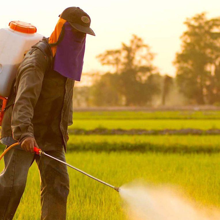 pesticides responsables lesions cerebrales enfants