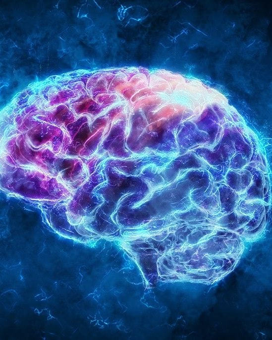 physique expliquer conscience faconne realite
