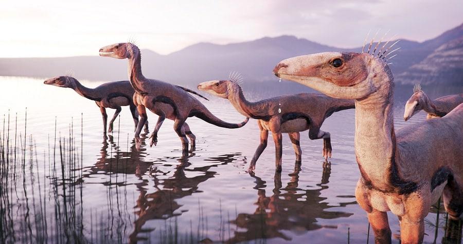 reconstitution silesaurus opolensis