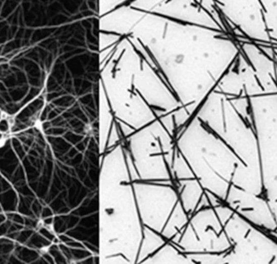réseau nanofils état frontière chaos performance