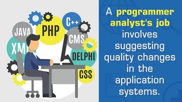 schema analyste programmeur