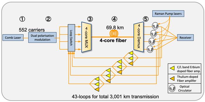 schema systeme transmission 319 tb/s japon
