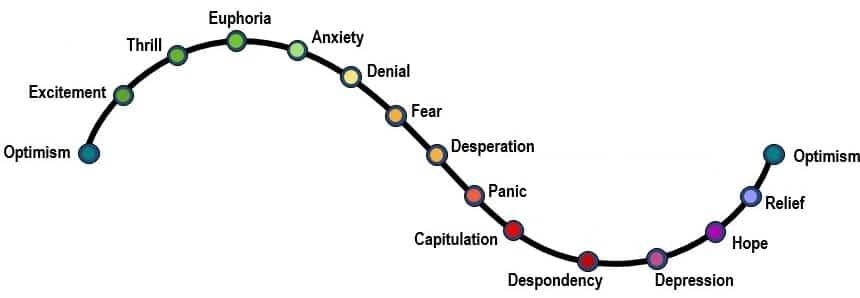 schema variation emotions