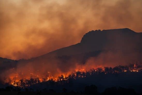 signes vitaux terre urgence climat