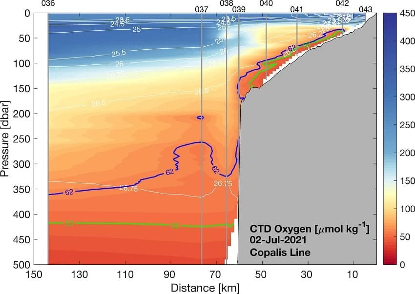 carte niveaux oxygene ocean pacifique