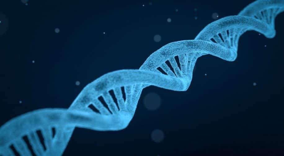 gène cible traitement endométriose