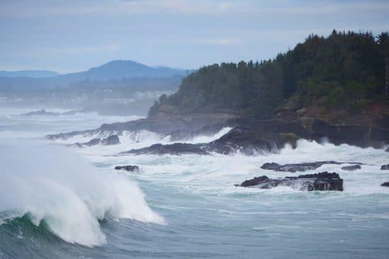 immense zone hypoxique ocean pacifique inquiete biologistes marins
