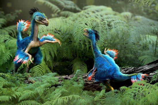 cartilage dinosaure fossilise revele cellules extremement bien conservees