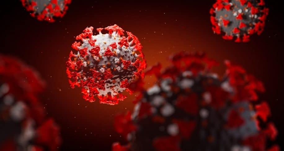 covid proteine pointe modifie cellules niveau coeur