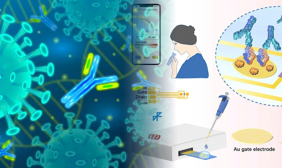covid test anticorps bon marche revele si immunise 5 minutes