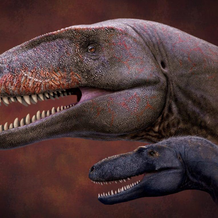 dinosaure superprédateur crétacé