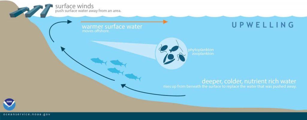 graphique eaux surface ouragans