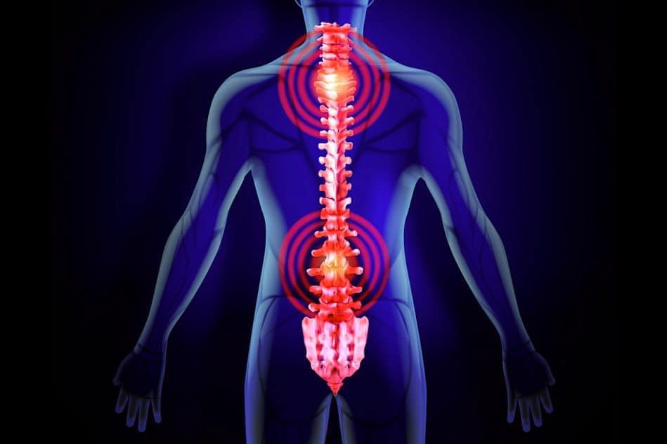 implant neuronal minuscule pourrait redonner blesses medullaires controle membres