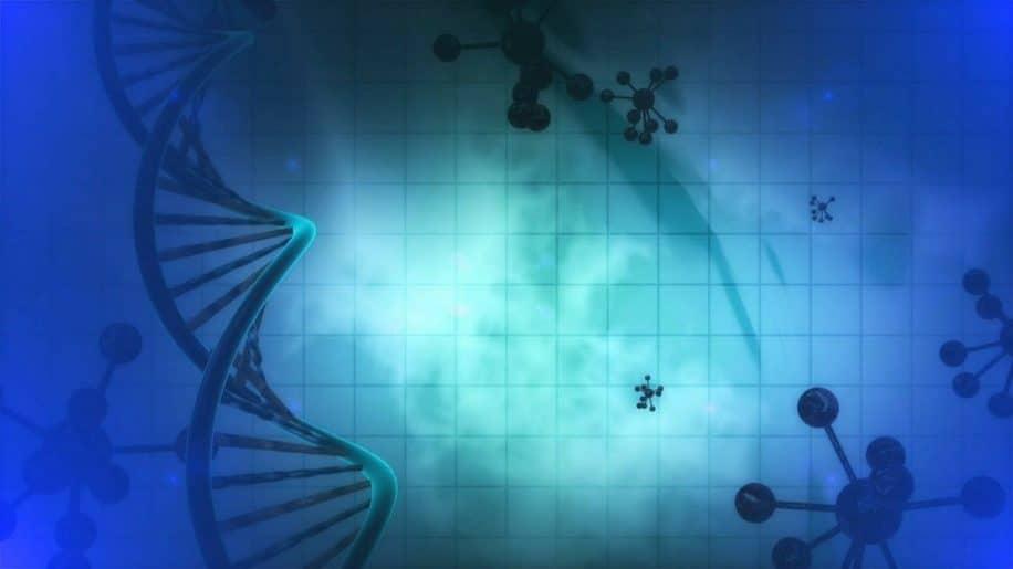 reprogrammation cellulaire anti-vieillissement