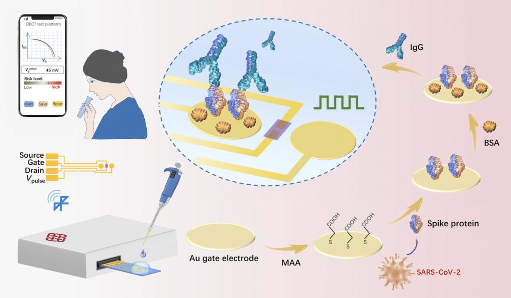 schema detecteur anticorps covid portable