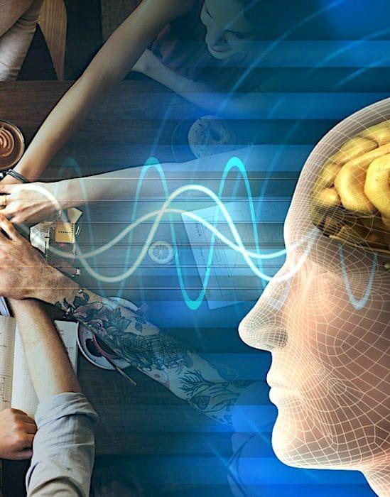 chercheurs identifient etats cerebraux propres travail equipe
