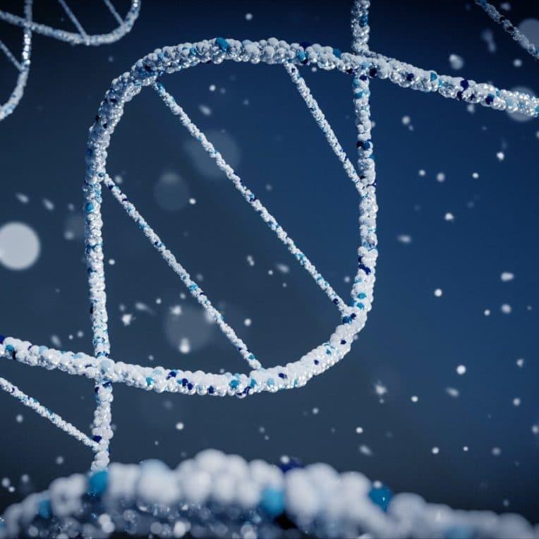 édition gènes CRISPR amélioration