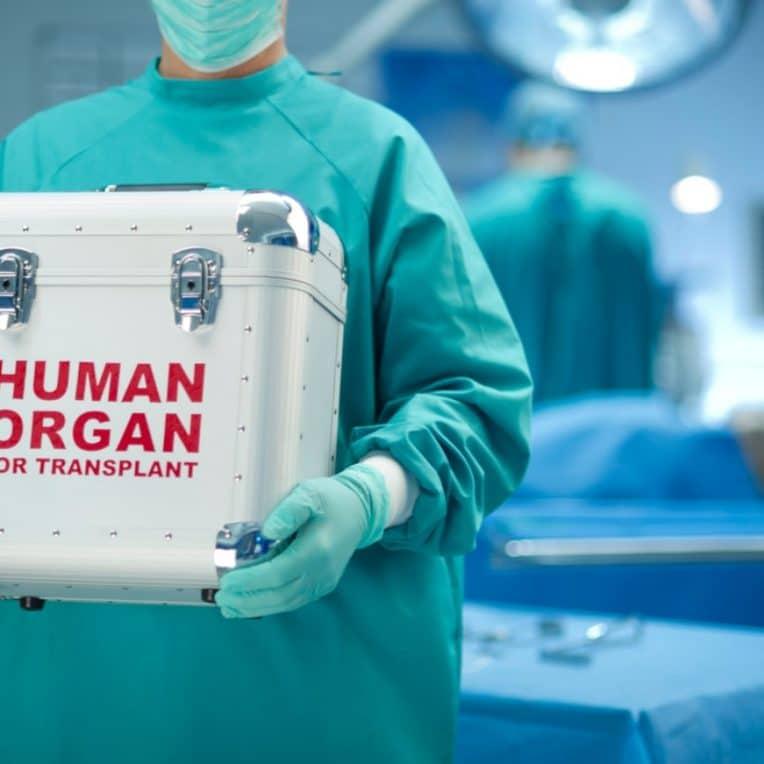 greffes organes vaccination covid-19