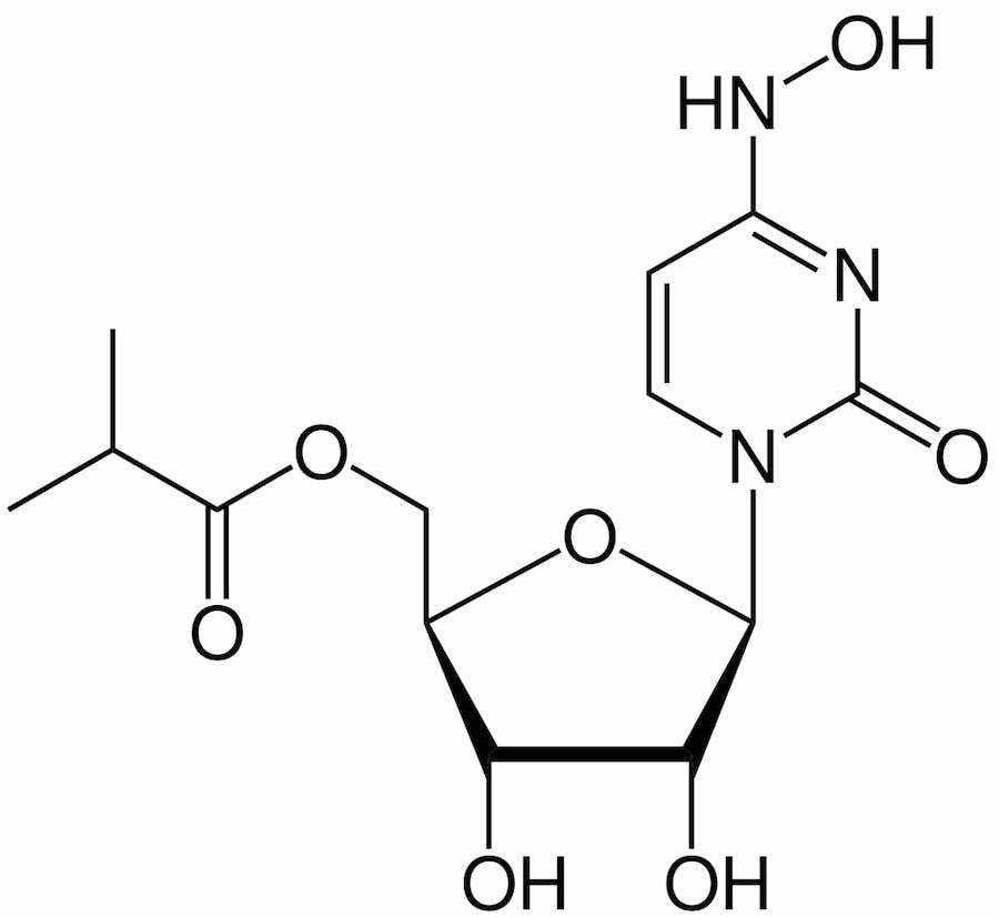 structure molnupiravir